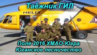 Полевой сезон 2016. № 3.  Лосенок, эксперимент с лягушками))))
