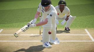 Don bradman cricket 17 wicket fall and DRS review