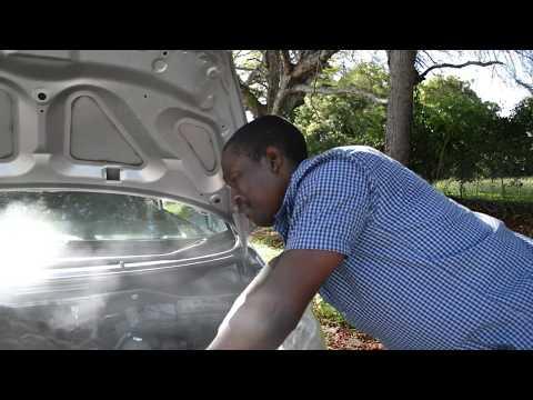 Barbuda 2017 Caribana Ad