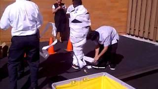 Housekeeping Olympics - Carmel, In