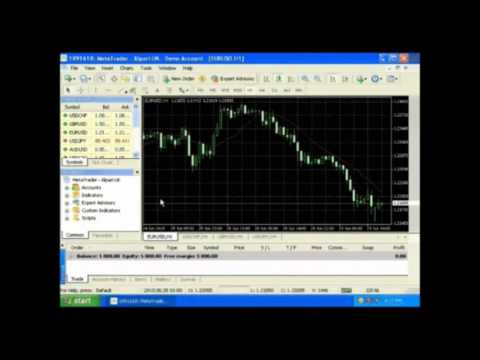 How to build forex robot free