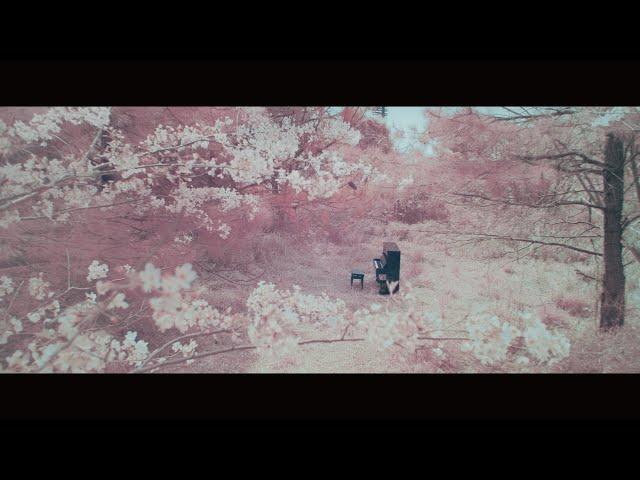 RADWIMPS - 鋼の羽根 [Official Music Video]