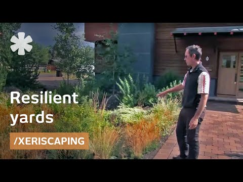 Xeriscaping: native plants and a drought-tolerant yard (LEED