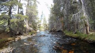 PART II California Trip Fly Fishing Eastern Sierras