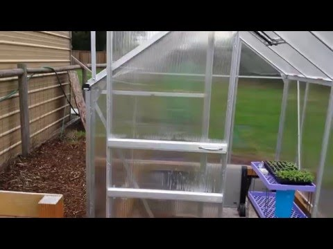 Harbor Freight 6x8 Greenhouse Tips N Tricks Review