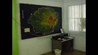 Large relief maps at the office of the Mayor of Pagan, CNMI