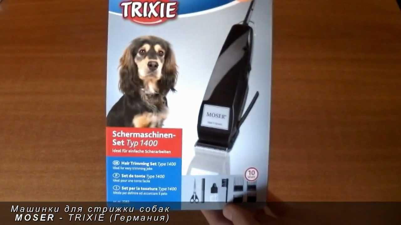 Продажа собак в украине ➤ доска объявлений besplatka. Ua поможет купить собаку, продажа щенков ✅ объявления, фото, цены.