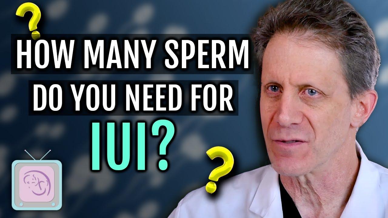 IUI - How many sperm do you need?