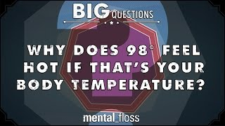 Why does 98 degrees feel hot if that