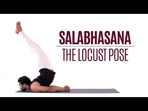 How to do Salabhasana, Locust Pose | Yoga | Reclining Postures