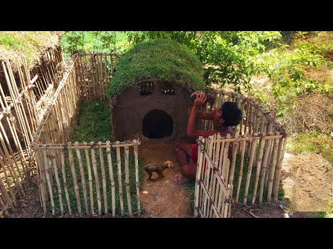 Secret Of Primitive: Building Wild Dogs House