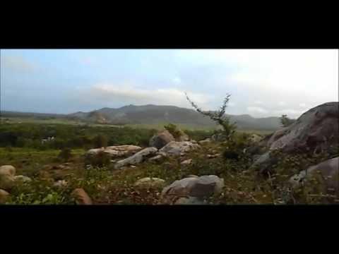 Panchalingeswar, Nilgiri, Chandipur, Kuldiha Forest, Devkund in Orissa. - Part 38