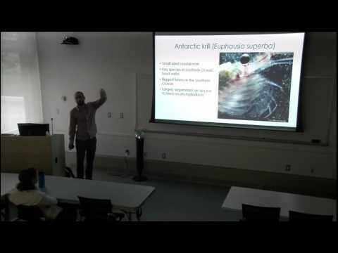 bento-goncalves:-autonomous-satellite-based-surveys-of-antarctic-seals