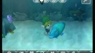 Animal Crossing City Folk Codes/Hacks