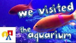 The Living Planet Aquarium + SYA