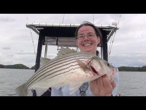 Fishing Lake Lanier Georgia