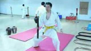Okinawan Goju Ryu Karate Conditioning