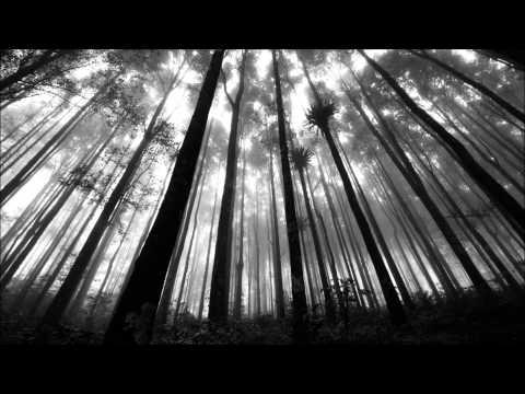 The Forest - Ubralod
