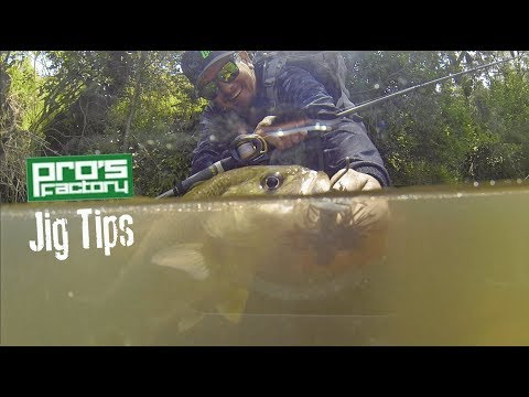 PITCHING JIGS IN CREEKS   For Australian Bass.
