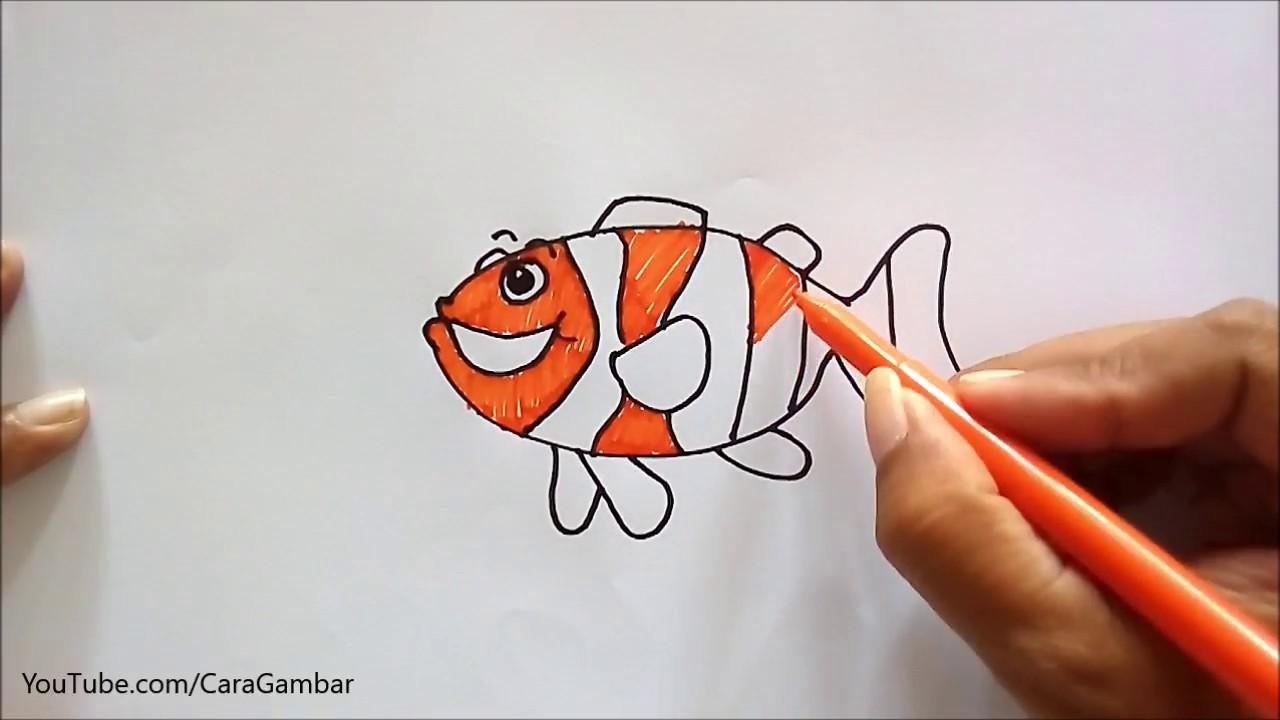 Cara Gambar Ikan Badut Youtube