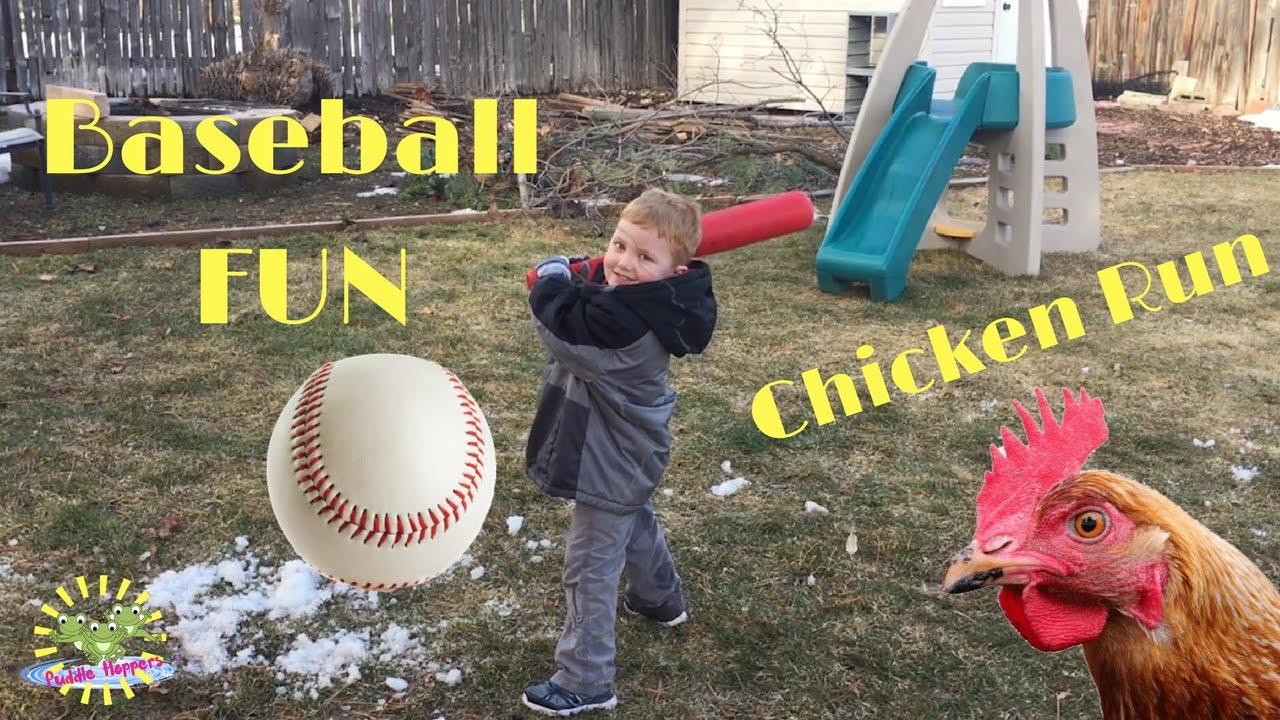 home run backyard baseball fun and chicken chase youtube