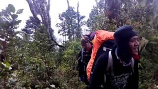 Mt slamet via kaliwadas