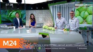 как выбрать в магазине самую свежую капусту - Москва 24