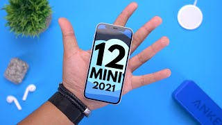 iPhone 12 Mini Revisit: 7 Months Later!