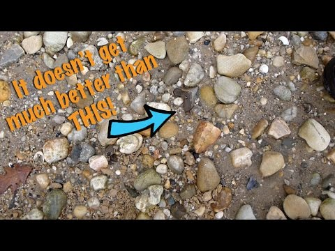 Fossil Hunt DEC 16, 2016: Hunting On The Potomac