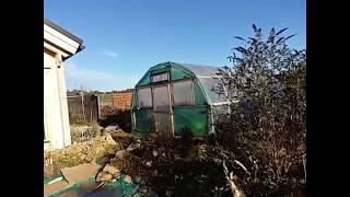 Gartenrundgang 30.12.2019 durch unseren Permakulturgarten zur Selbstversorgung