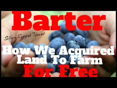 How We Acquired Farm Land For Free! Barter Can Save Your Lif