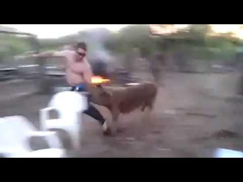 Gordo se coge a millana wild life - 2 5