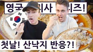 첫날! 산낙지를 만나본 영국 요리사는 과연?! !! 영국 요리사 한국 음식 투어 2탄 1편!!  British Chef