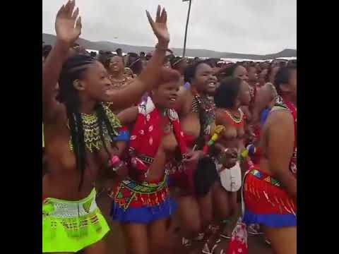 South Africa cultural Zulu dance