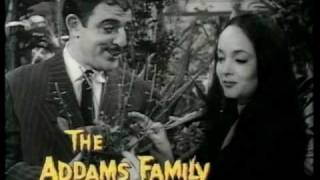 The Goodies & The Addams Family (promo) 1990