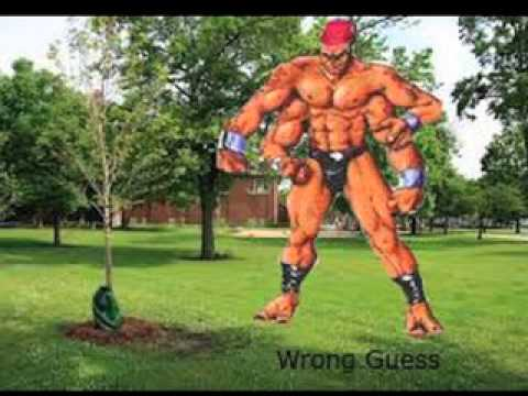 Louis Baydala - Wrong Guess