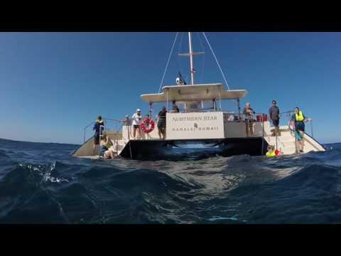 Captain Andy's Sailing And Snorkel Adventure On Kauai