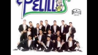 Banda Pelillos - Cuatro Rosas