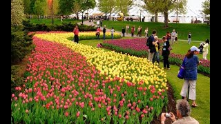 Canadian Tulip Festival, Ottawa – Canada | Small luxury hotels of the world