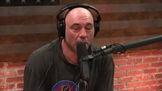 Joe Rogan on Addiction  Wasting Your Life