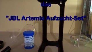 Artemia-Aufzucht-Set - für Euch getestet