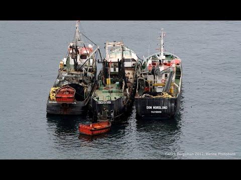 Hugo Salgado: Individual Transferable Quotas in Chilean Fisheries