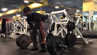 فيديو.. تمارين رفع الأثقال المفيدة في تقوية عضلات الظهر