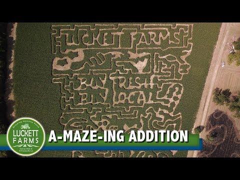 Luckett Farms' A-MAZE-ING Addition