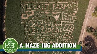 Luckett Farms' A-maze-ing Addition