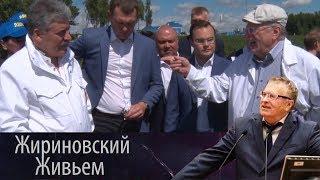Жириновский навестил Грудинина и собрал клубнику в Совхозе имени Ленина