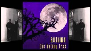 Watch Autumn The Well video