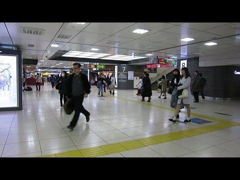 東京駅構内の施設と乗換ホーム案内/Facilities in Tokyo Station premises and transfer platform guide