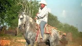 Banda Estrellas de Sinaloa - El Palo Verde (VIDEO OFICIAL)