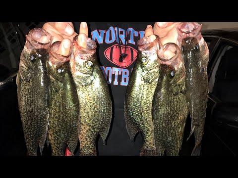 BIG Lake Altoona Crappie Fishing + Bonus Pike